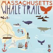 List of whaling museums, whale watching in Massachusetts.
